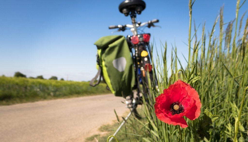 cycling-5178398_1920-1024x683