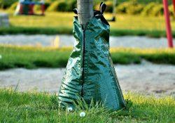 bewässerungssack